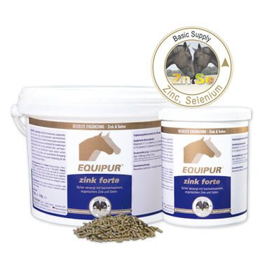 """EQUIPUR - zink forte """"P"""" 3000 g"""